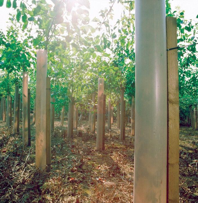 ATF Supplies Nationwide Environment